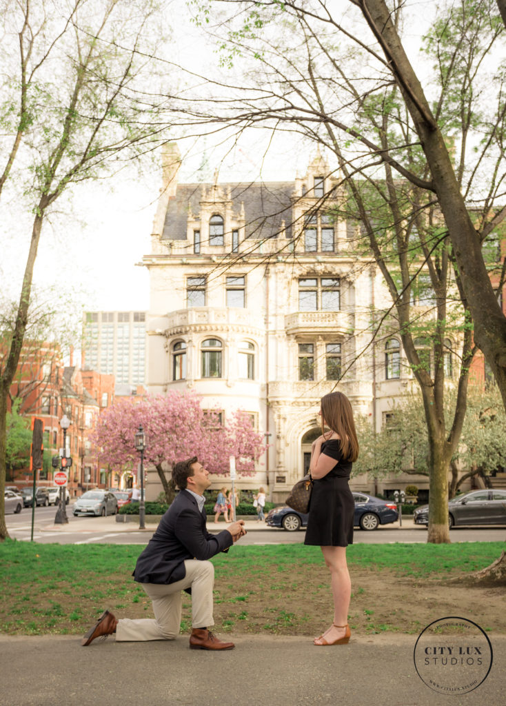 surprise proposal photo back bay boston