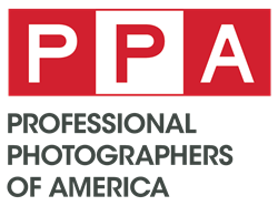 professional wedding photographer boston